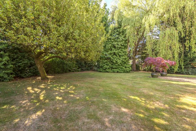 Front Garden of Off Forest Road, East Horsley KT24