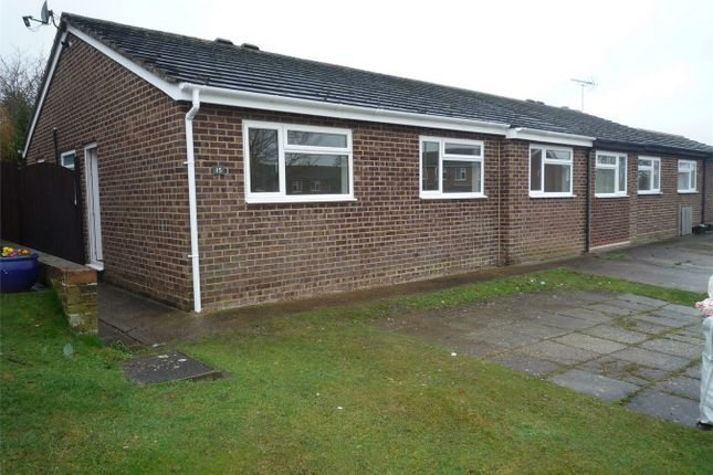 Thumbnail Semi-detached bungalow to rent in Steed Close, Herne Bay, Kent