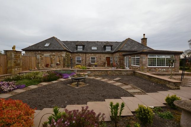 Thumbnail Cottage for sale in Chathill