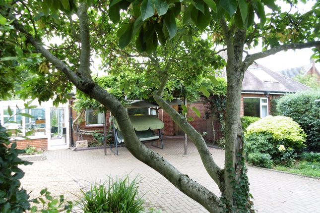 Thumbnail Detached bungalow for sale in Lawn Chase, Witham