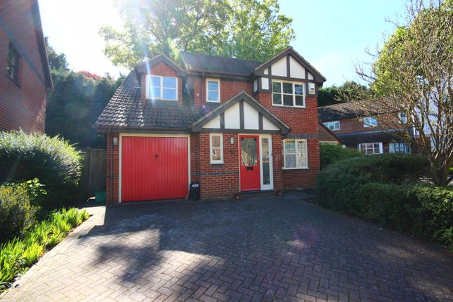 Thumbnail Detached house to rent in Randolh Road, Bromley