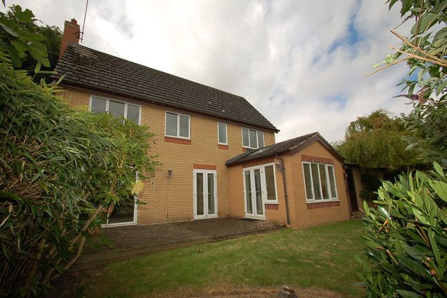 Thumbnail Detached house to rent in Sutton Road, Oundle, Peterborough