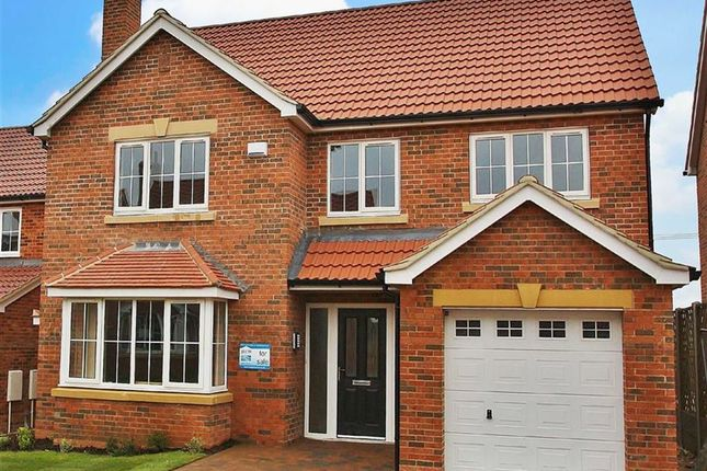 Thumbnail Property for sale in Falkland Way, Barton-Upon-Humber
