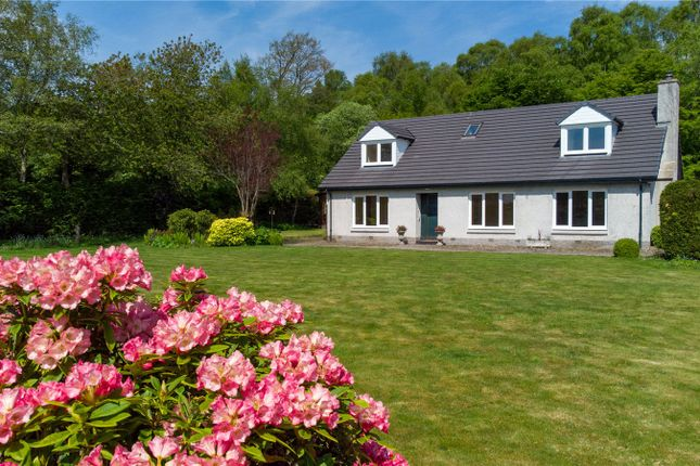 Thumbnail Detached house for sale in Benshie Cottage, Oathlaw, By Forfar, Angus