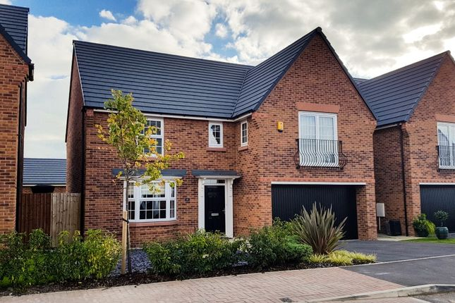 Thumbnail Detached house to rent in Thalia Avenue, Stapeley, Nantwich