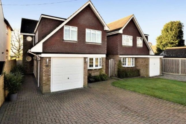 Thumbnail Detached house for sale in Shanklin Avenue, Billericay