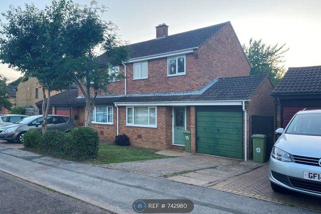 Thumbnail Semi-detached house to rent in Edrich Avenue, Milton Keynes