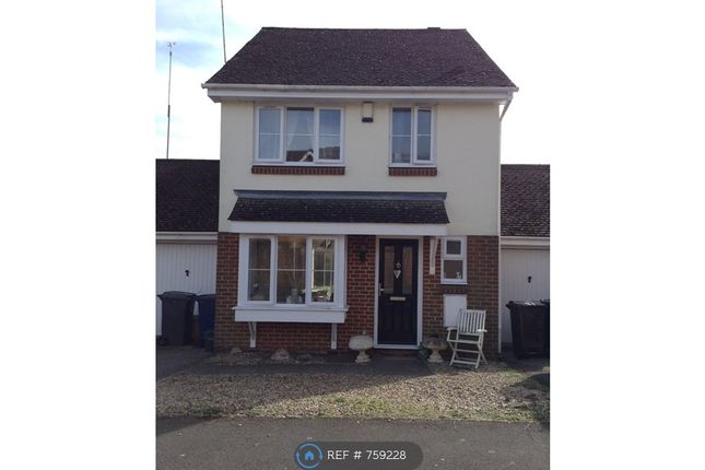 Thumbnail Detached house to rent in Crosby Way, Farnham