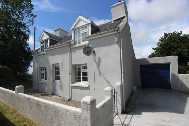 Thumbnail Property to rent in Lluest Fawr, Capel Madog, Aberystwyth
