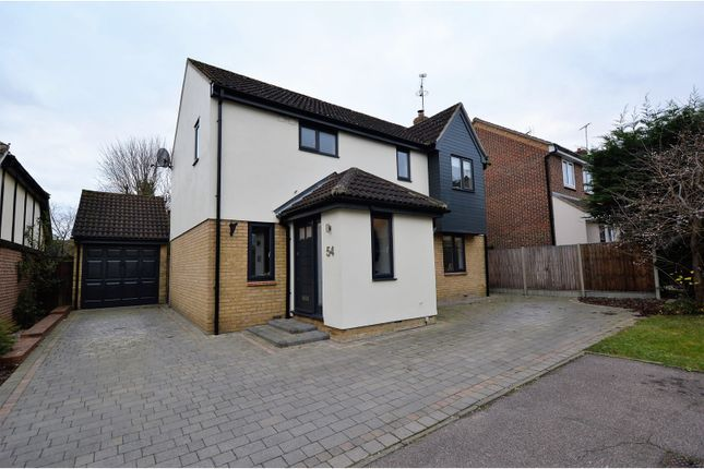 Thumbnail Detached house for sale in Lampern Crescent, Billericay