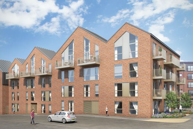Thumbnail Flat for sale in Roscoe Road, Sheffield
