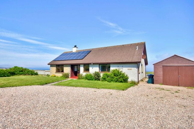 Thumbnail Detached bungalow for sale in East Canisbay, Wick