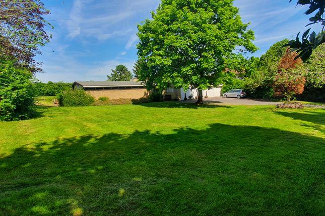 Thumbnail Detached bungalow for sale in Melton Road, Edwalton, Nottingham