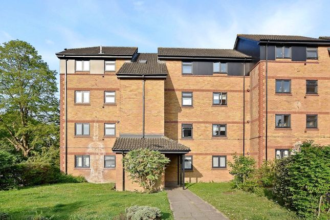 Thumbnail Flat to rent in Sterling Place, London
