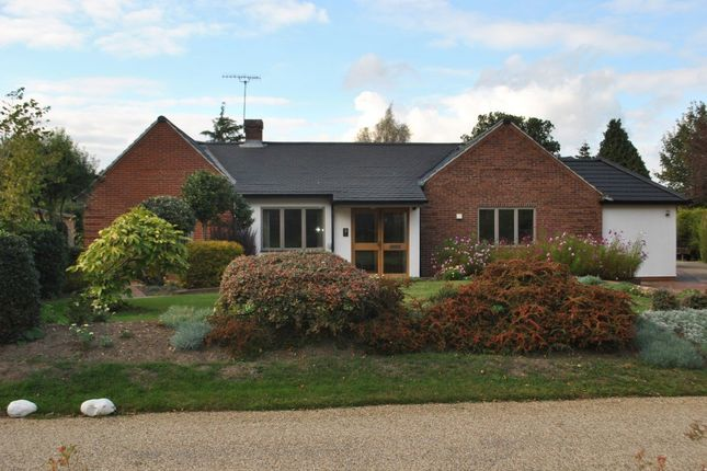 Thumbnail Detached bungalow to rent in South Walk, Thorpe End, Norwich