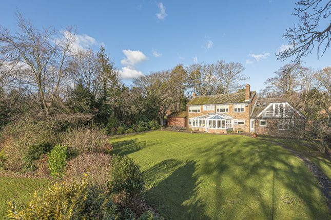 Thumbnail Detached house for sale in Horns Road, Hawkhurst, Cranbrook