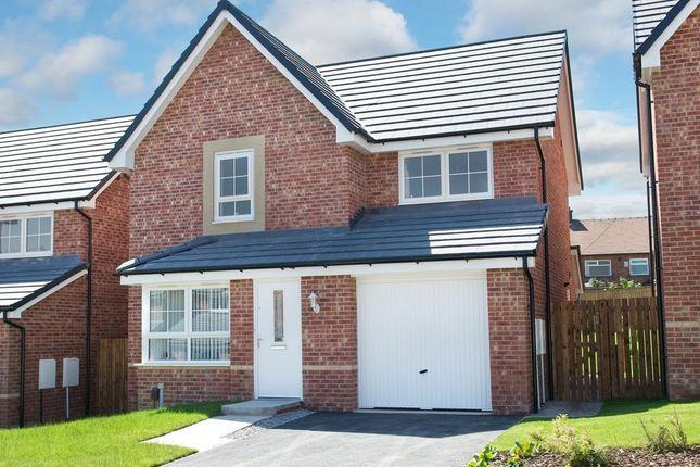 "Thumbnail Detached house for sale in ""Alston"" at Dearne Hall Road, Barugh Green, Barnsley"