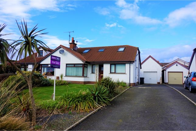 Thumbnail Detached house for sale in Cooks Cove, Newtownards