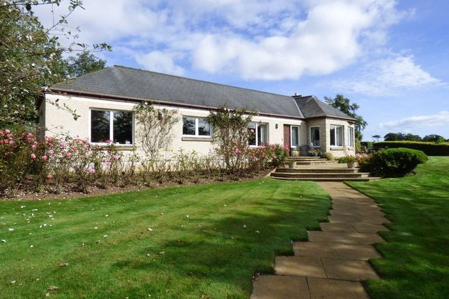 Thumbnail Detached house for sale in Charleton Estate, By Elie, Fife