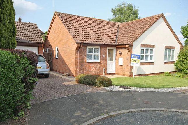 2 bed semi-detached bungalow to rent in Oak Close, Bromyard HR7