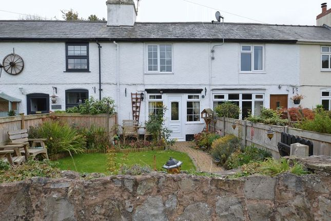 Thumbnail Terraced house for sale in Maes Y Coed Cottages, Afonwen, Mold