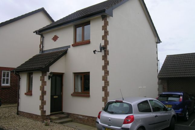 Thumbnail Detached house to rent in Hele Rise, Barnstaple