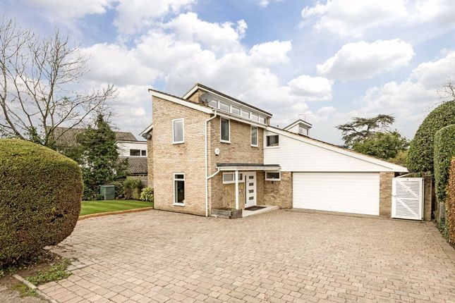 Thumbnail Detached house for sale in Church Meadow, Long Ditton, Surbiton