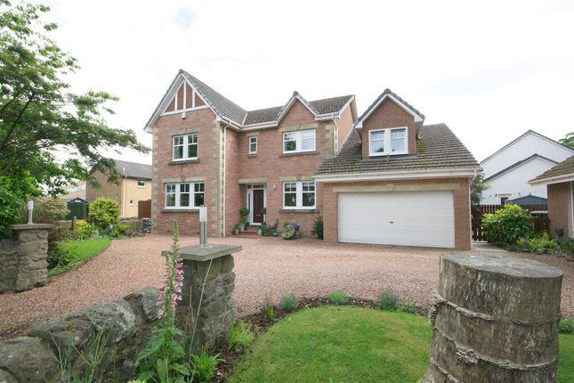 Thumbnail Detached house for sale in Carrongrange Avenue, Stenhousemuir, Larbert