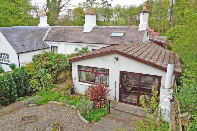 Thumbnail Semi-detached bungalow for sale in Kilconquhar, Elie, Leven