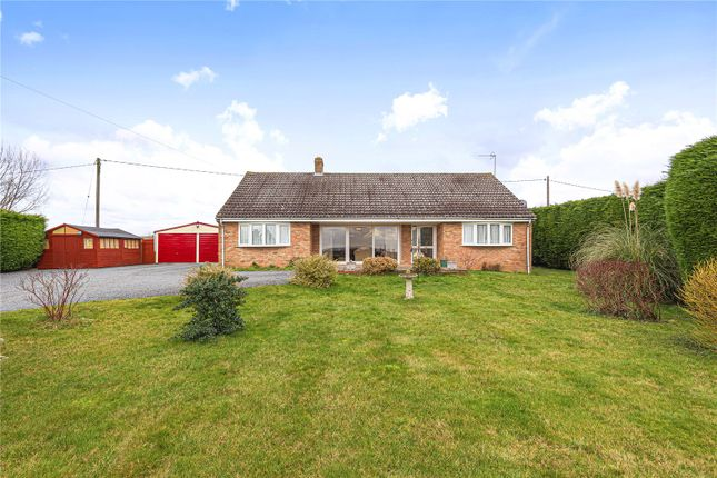 Thumbnail Bungalow for sale in Lower Road, Croydon, Royston, Cambridgeshire