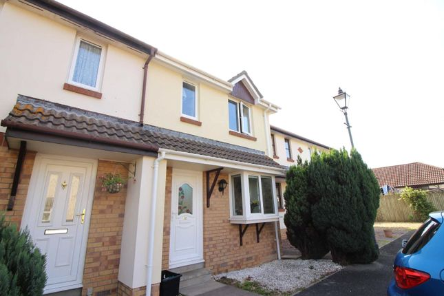 Thumbnail Terraced house to rent in Meadow Park, Roundswell, Barnstaple
