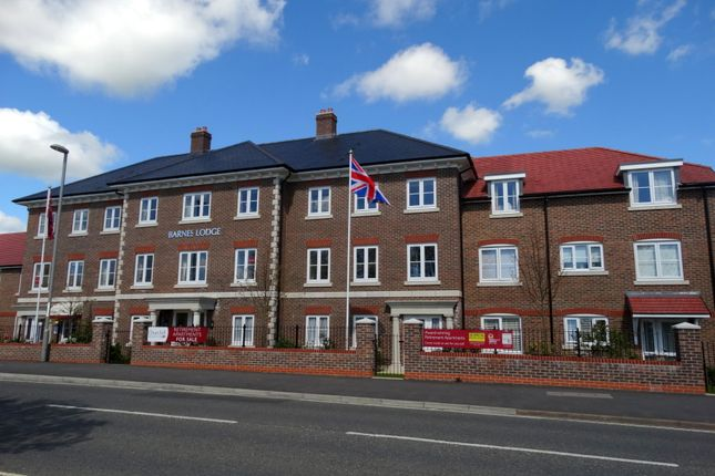 Thumbnail Flat to rent in Barnes Lodge, Dorchester