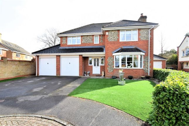 Thumbnail Detached house for sale in Ridgewood Drive, Frimley, Camberley, Surrey