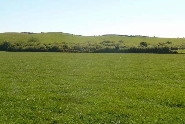 Thumbnail Land for sale in Glanrhyd, Cardigan