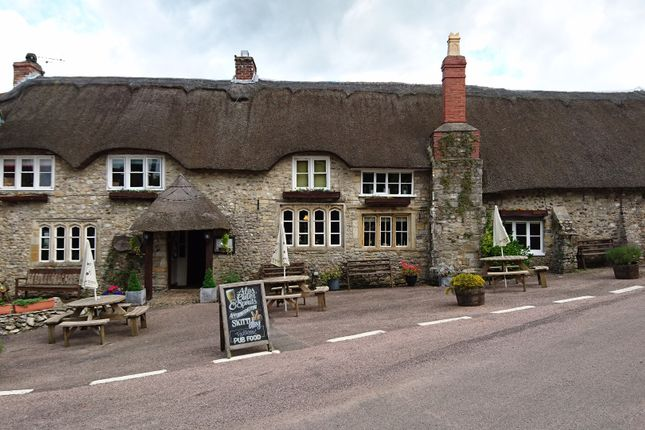 Thumbnail Pub/bar for sale in Chard Street, Chardstock, Nr Axminster, Devon
