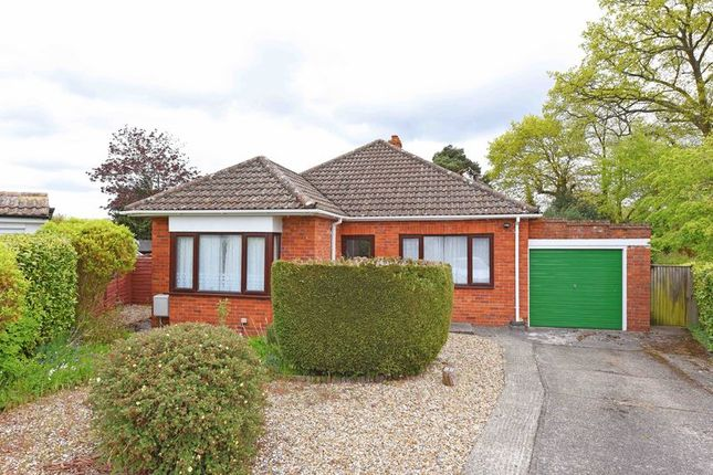 Thumbnail Detached bungalow for sale in Eastlyn Road, Pamber Heath, Tadley