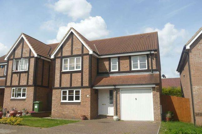 Thumbnail Detached house to rent in Godrevy Grove, Tattenhoe, Milton Keynes