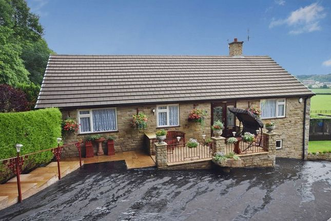 Thumbnail Detached bungalow for sale in Abbey Green Road, Leek