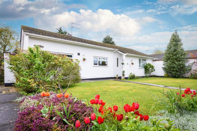 Thumbnail Detached bungalow for sale in Sycamore Close, Loddon