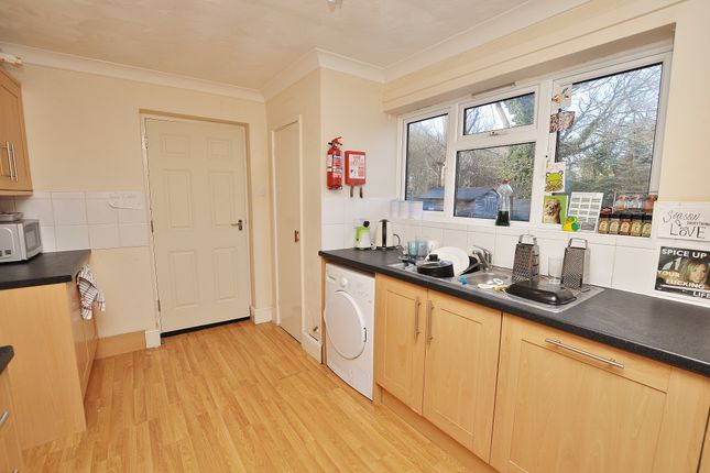Thumbnail Semi-detached house to rent in Hartshill, Guildford