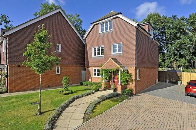 Thumbnail Detached house for sale in Wild Wood Close, Chiddingfold