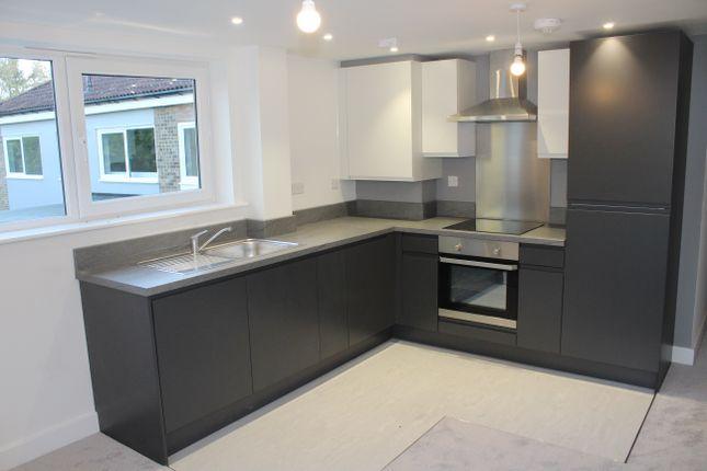 Thumbnail Flat to rent in Mere Farm Lane, Bury St Edmunds