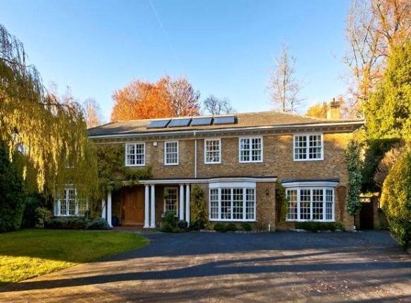 Thumbnail Property to rent in Kier Park, Ascot, Berkshire