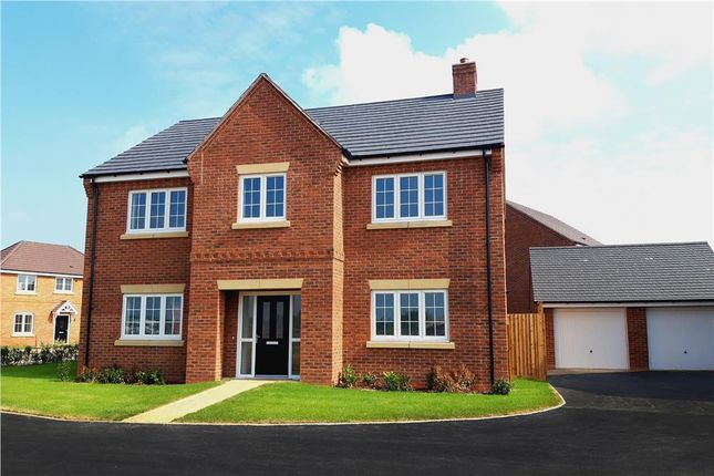 """Thumbnail Detached house for sale in """"Charlesworth"""" at Waterloo Road, Bidford-On-Avon, Alcester"""
