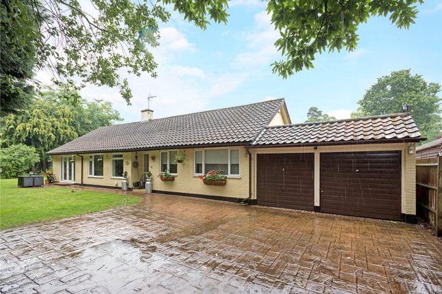 Thumbnail Detached bungalow for sale in St. Georges Lane, Ascot, Berkshire