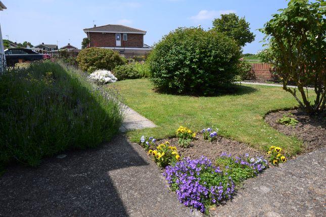 Front Garden of Grenville Road, Pevensey Bay BN24