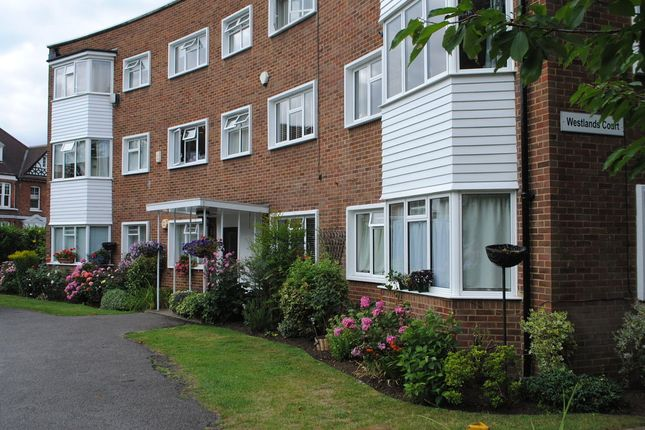 Thumbnail Property to rent in Bridge Road, East Molesey