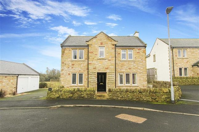 Thumbnail Detached house for sale in Tweed Meadows, Cornhill On Tweed, Northumberland