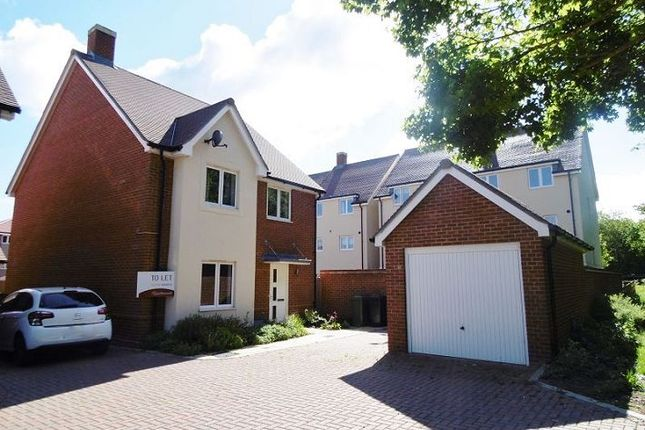 Thumbnail Detached house to rent in Barber Road, Basingstoke