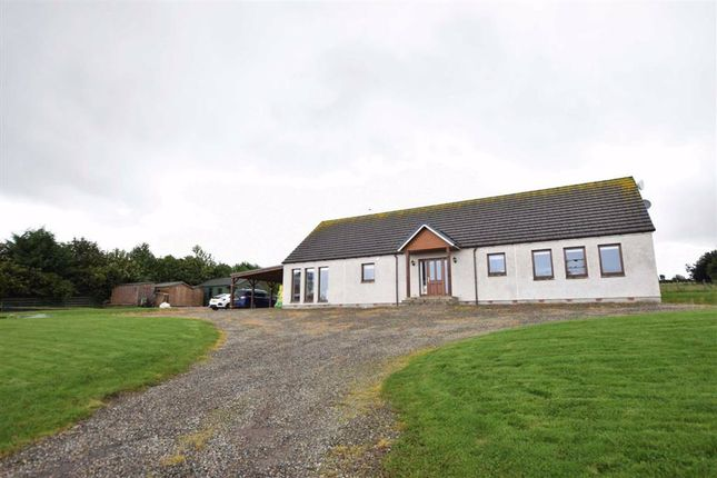 Thumbnail Detached bungalow for sale in Conon Bridge, Dingwall